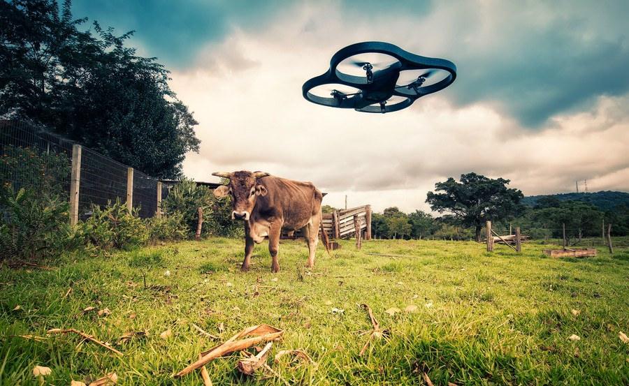 Drone y Finca.